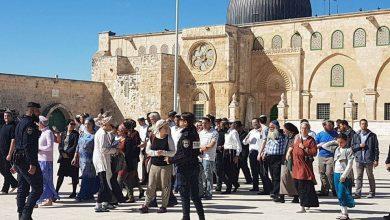 صورة الإفتاء الفلسطيني يحذر من عواقب التغاضي عن جرائم الاحتلال ضد المقدسات