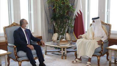 صورة أمير قطر يبحث مع تشاووش أوغلو المستجدات الإقليمية والدولية