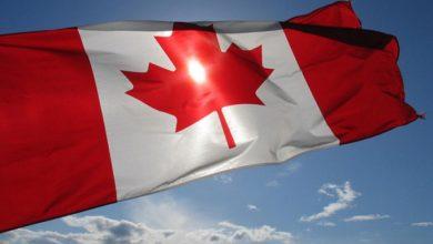صورة إليكم كيفية تقديم طلب اللجوء من داخل أو خارج كندا