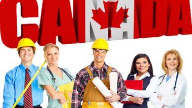 صورة أونتاريو: قوانين جديدة تعترف بمهارات المهاجرين